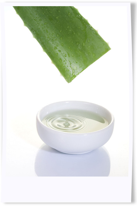 Aloe Vera Gel for Age Spots - Women at Forty